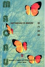 澳門蝴蝶 Butterflies in Macau